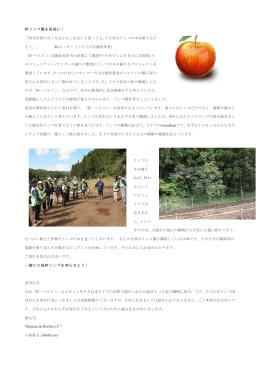 絆リンゴ園を長部に! 「明日世界がなくなるかもしれ - kizuna-in