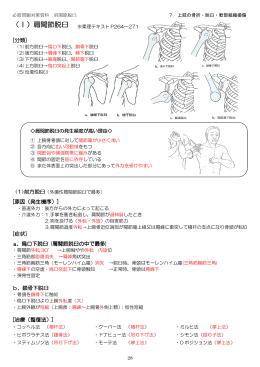 (I)肩関節脱臼