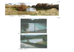 ため池全景 (堤体より上流側)