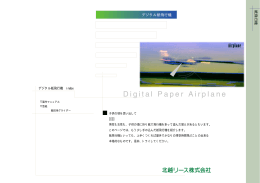 Digital Paper Airplane