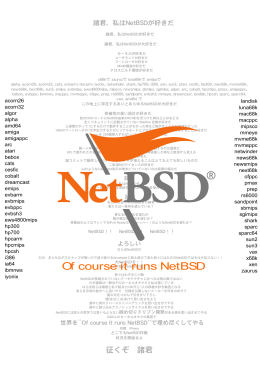 Of course it runs NetBSD