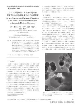 クライオ電顕法による氷の電子線 照射下における構造