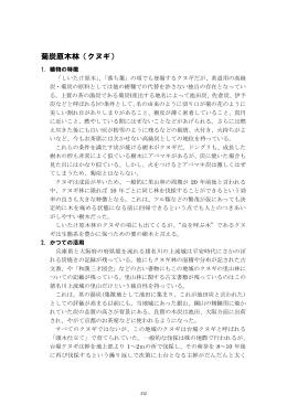 菊炭原木林(クヌギ)