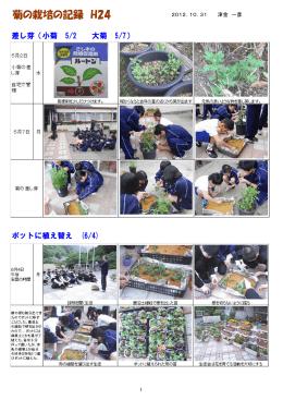 菊栽培の記録(PDF:1831KB)