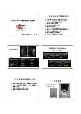 超音波検査の特徴‐長所 腓腹筋内側頭肉離れ (テニスレッグ) 超音波