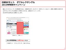日経BPネット ダブルレクタングル 2015年特別キャンペーン