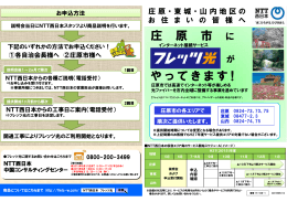 NTT西日本の資料(簡易版)