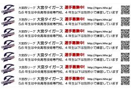 大宮西リーグ 大宮タイガース 選手募集中!