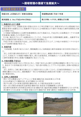 (JA茨城みどり枝物生産部会)(PDF:239KB)