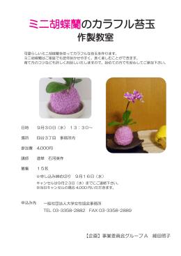 ミニ胡蝶蘭のカラフル苔玉