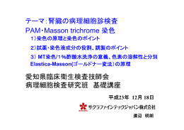 PAM・Masson-trichrome染色