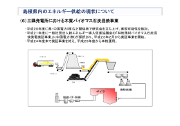 (6)三隅発電所における木質バイオマス石炭混焼事業