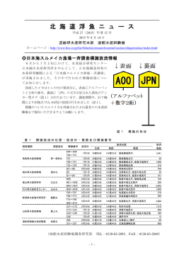第12号 日本海スルメイカ漁場一斉調査標識放流情報(PDF:112KB