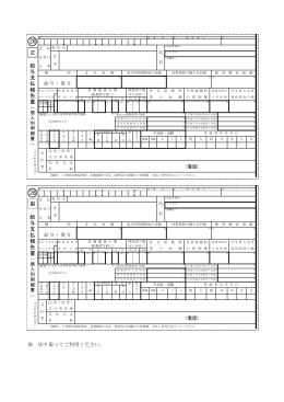 (個人別明細書)(PDF:234KB)