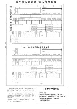 平成28年度 個人別明細書の様式(PDF形式, 165.52KB)