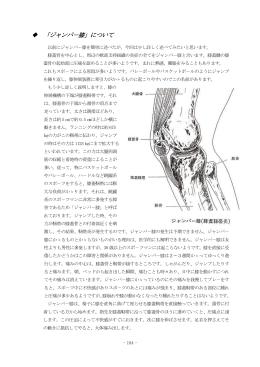 「ジャンパ-膝」について
