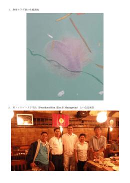 1.熱帯クラゲ類の生態調査 2.西フィリピン大学学長(President Hon