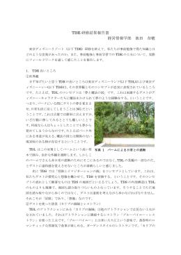 TDR 研修結果報告書 経営情報学部 池田 奈穂