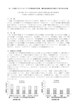 20 八尾産エダマメのハウス早熟栽培用品種