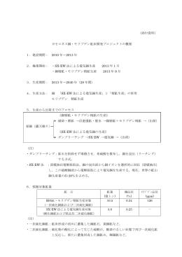 カセロネス銅・モリブデン鉱床開発プロジェクトの概要 (PDF 137KB)