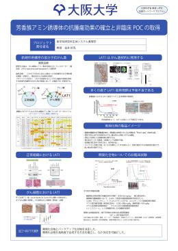 芳香族アミン誘導体の抗腫瘍効果の確立と非臨床POCの取得