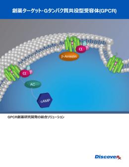 創薬ターゲット・Gタンパク質共役型受容体(GPCR)