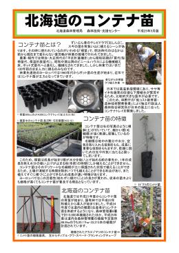 北海道のコンテナ苗(パンフ)(PDF:1678KB)