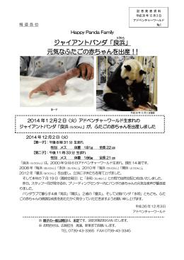 ジャイアントパンダ「良浜」 元気なふたごの赤ちゃんを出産!!