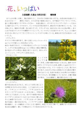 入笠湿原・入笠山(8月20日) 報告書
