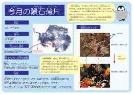 2014年6月 (PDF・359KB)