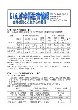 いんば水稲生育情報4[8月9日](PDF:158KB)