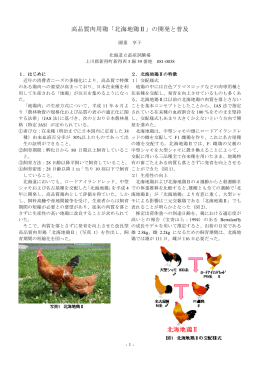 高品質肉用鶏「北海地鶏Ⅱ」の開発と普及