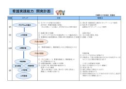 看護実践能力 開発計画