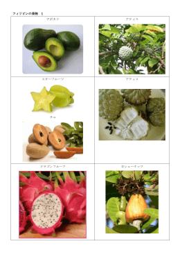 フィリピンの果物 1 アボカド アティス スターフルーツ チコ アティス ドラゴン