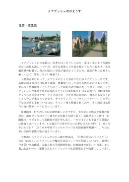 メアブッシュ市のようす(PDF:428.1KB)