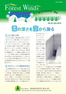 雪の深さを空から測る(PDF:797KB)