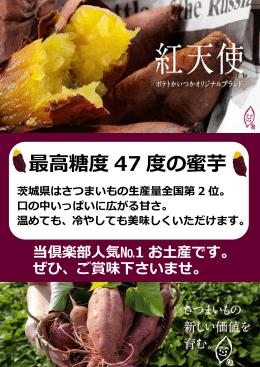 最高糖度 47 度の蜜芋