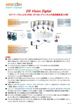 DS Vision Digital