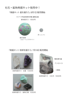 化石・鉱物発掘キット販売中!