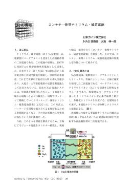 コンテナ一体型ナトリウム・硫黄電池