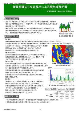 衛星画像の3次元解析による風倒被害把握