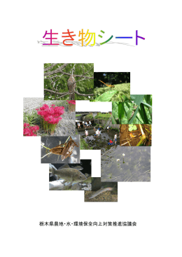 PDF形式 約6.4MB - 栃木県農地水多面的機能保全推進協議会