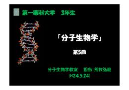 『分子生物学』 - 第一薬科大学