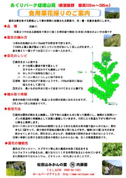 食用菜花狩りご案内(PDFファイル)