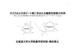 オカラおよび赤ビート根に含まれる機能性物質の利用 北海道大学大学院