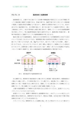 File No. 16 施設栽培と塩類集積