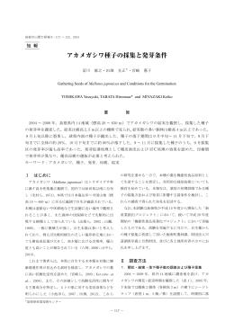 アカメガシワ種子の採取と発芽条件(PDF:1137.6KB)