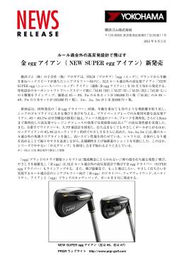 PDF版(318KB)