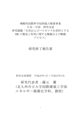 研究終了報告書 研究代表者:藤元 薫 (北九州市立