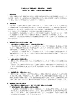 児童虐待による重篤事例 検証報告書 (概要版) (平成23 年3月